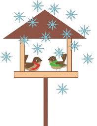 Zimowe fotografowanie ptaków przy karmniku... - Szkolne Blogi