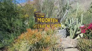 historic moorten botanical garden and cactarium