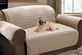 Sofa Design Pet Furniture Dog Bed Attached To Human Bed Small Dog