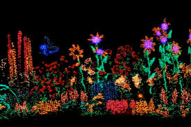 Bellevue Christmas Lights Botanical Garden Garden Dlights Bellevue Washington Every December The
