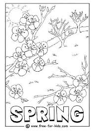 Small Picture Spring Coloring Pictures