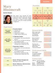 Resume Portfolio Mesmerizing Resume Portfolios Canreklonecco
