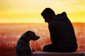 How Your Pet Can Aid in Addiction Recovery - Pet Life Today