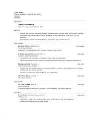 Incredible Sample Resume Computer Technician Format Web