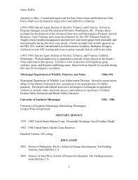 3 - Fbi Special Agent Resume