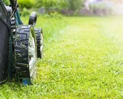 Lawn Care Faq Proper Lawn Treatment Aftercare