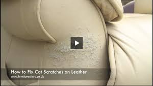 How To Repair Cat Scratches Leather Furniture Clinic