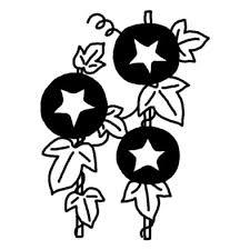 アサガオ朝顔4夏の花無料白黒イラスト素材 アサガオ朝顔の