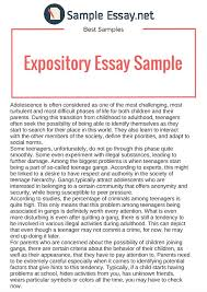 Sample Expository Essay Expository Essay Samples Just The Facts Sample Essay Medium