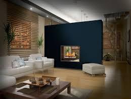 country comfort fireplace insert avalon fireplace insert propane fireplace insert woodburning insert fireplace