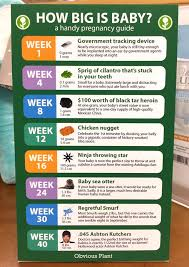 Baby Chart Beauteous I Left This Baby Growth Chart In A Babies R Us Funny