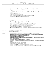 Sample Resume For Marketing Job Marketing Manager Loyalty Resume Samples Velvet Jobs 43
