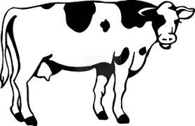cow clipart black and white. Wonderful Black Cow Clip Art Free  Clipart Library  Images On Black And White C