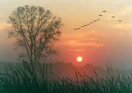 dawn to dusk light. Photo Via James Jordan On Flickr. Dawn To Dusk Light