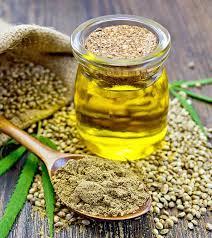 Hasil gambar untuk what is hemp oil