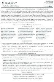 Sales Account Manager Resume Objective Director Marketing Sample