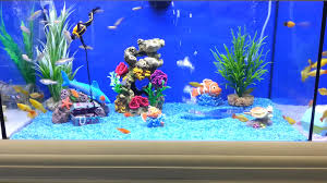 Funny Fish Tank Decorations Brilliant Fish Tank For Kids Youtube