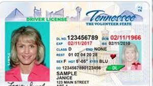 Tennessee Acceptable Voter Forms Of In Ids