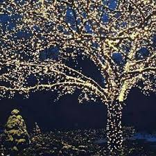 Warm White Solar Powered LED Fairy Lights With Decorative Flowers Solar Powered Fairy Lights Warm White