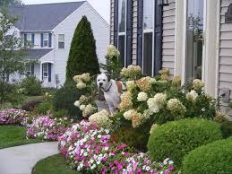 front garden planting ideas. front garden landscaping ideas no grass (1) planting