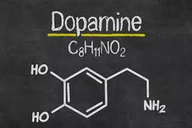 Влияние музыки на мозг человека факты исследования и теории дофамин что такое дофамин в головном мозге