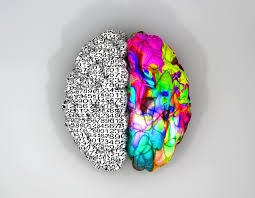 consciousness qla consulting left and right brain concept top
