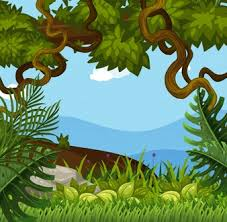 jungle background vector. Fine Vector Background Scene With Trees In The Woods For Jungle Vector M