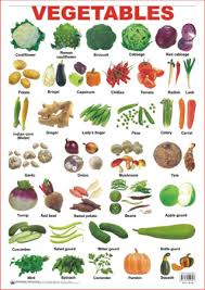 Educational Charts Series Vegetables