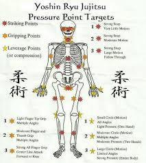 Pressure Point Chart Martial Arts Printed Martial Arts Martial Arts Techniques Martial
