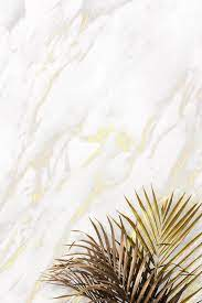 leaves on a marble background vector ...