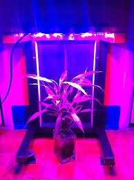 Kitchen Grow Lights 108w Led Grow Light Panel 9 Steps