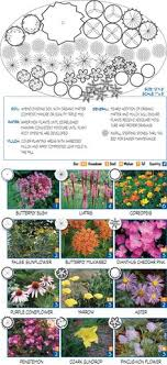 Small Picture Garden templates for different conditions using native plants