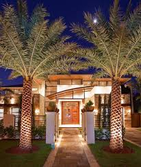 medium size of miami king palm tree exterior contemporary with stone walls modern outdoor lighting designer