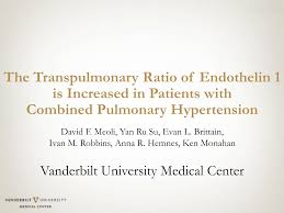 The Transpulmonary Ratio of Endothelin 1 is Increased in Patients with  Combined Pulmonary Hypertension