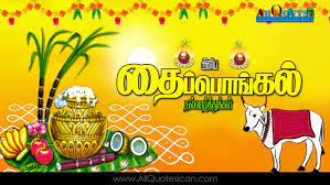 Thai Pongal Wishes In Tamil Best Thai ...