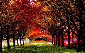 Beautiful Autumn Desktop Wallpapers ...