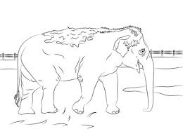 coloring pictures of elephants 2. Exellent Coloring Coloring Pages Of Elephants 2 In Pictures H