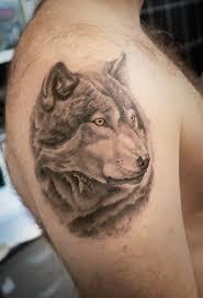 татуировка волк на плече Tattoo Academy