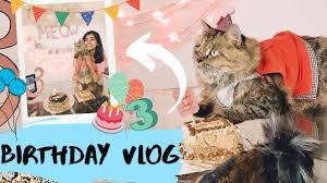Throwing a Quarantine Birthday for my Cat | My Cats 3rd Birthday | Birthday  Vlog