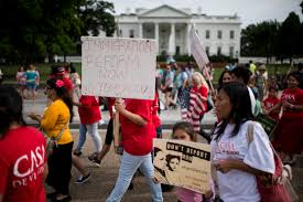 what the election means for the future of immigration reform  pbs  what the election means for the future of immigration reform  pbs newshour