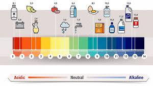 Ph Food Chart Alkaline Diet Book Does A High Alkaline Diet Really Boost Your Health