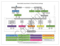 Clinical Chart Homicidality Clinical Practice Scale Flow Chart 1 8 18