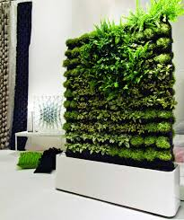 Contemporary Home Interior Decoration Using Various Indoor Green Wall :  Delectable Picture Of Eco Friendly Home