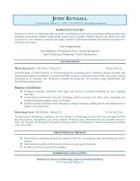 Professional Resume Objective Examples - Examples Of Resumes