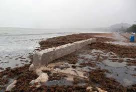 Resultado de imagen de fotos del temporal en las playas de Marina D'Or