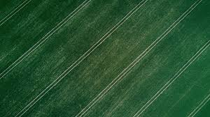 grass field aerial. Photography, Grass, Field, Aerial View, Landscape, Symmetry Wallpapers HD / Desktop And Mobile Backgrounds Grass Field 1