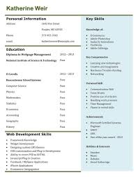 Tableau Sample Resumes Famous Tableau Developer Resumes Photos Entry Level Resume 45