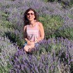 Sonya Cohen Facebook, Twitter & MySpace on PeekYou