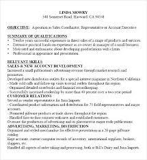 functional sales resume pdf functional sales resume