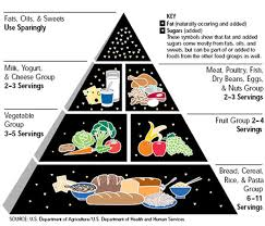Food Pyramid Project Feed Me